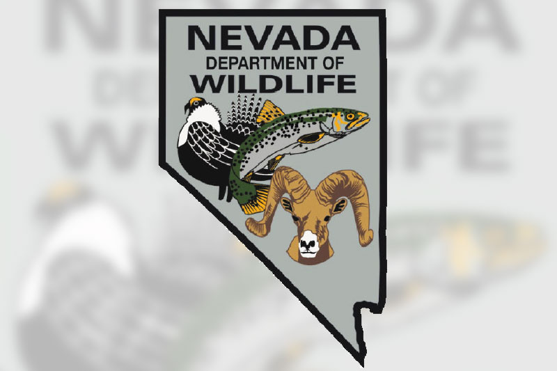 NDOW - Nevada Department of Wildlife