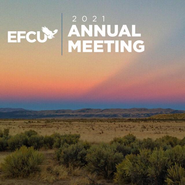20 10526 2021 Annual Meeting Facebook Banner web e1618246453429
